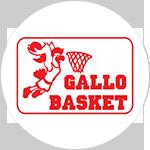 ASD Gallo - Basket